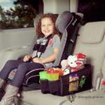 Auto Opbergbox - Travel Pal