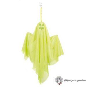 Halloween - Spook - Decoratie - 50 cm - Groen