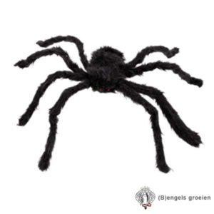 Halloween - Harige Spin - 70 cm