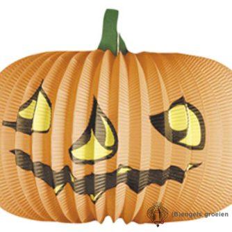 Halloween - Lampion - Pompoen - 36 cm