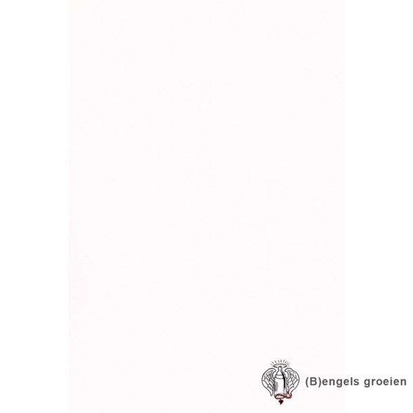 Behang - Nijntje, Woezel en Pip, Dikkie Dik - 23590