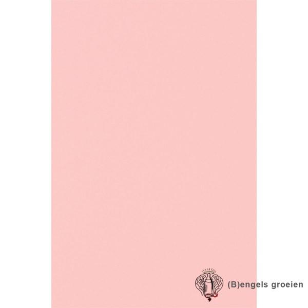 Behang - Nijntje, Woezel en Pip, Dikkie Dik - 23592