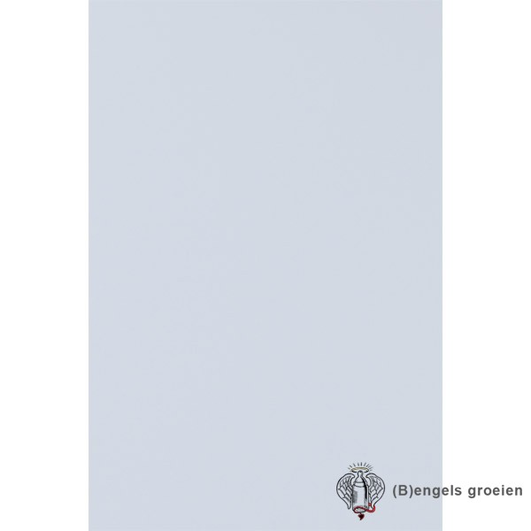 Behang - Nijntje, Woezel en Pip, Dikkie Dik - 23657