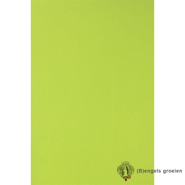Behang - Nijntje, Woezel en Pip, Dikkie Dik - 23661