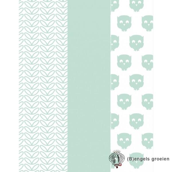 Hydrofiel washandjes - Owl - Mint (3 st.)