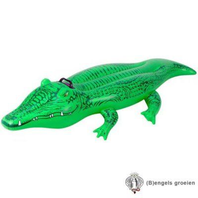 Ride-on - Opblaasbaar - Krokodil