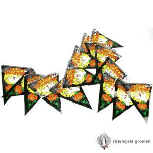 Halloween - Vlaggenlijn - Spook - 6 m