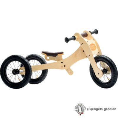 Trybike - 4 in 1 Loopfiets - Hout - Bruin